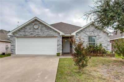 Dallas Single Family Home For Sale: 3306 Shining Light Drive