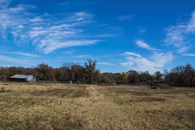 Parker County, Tarrant County, Wise County Residential Lots & Land For Sale: 549 Circle T Drive