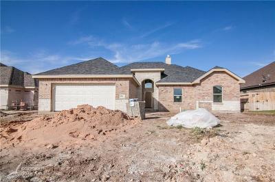 Abilene Single Family Home For Sale: 358 Brazos Drive