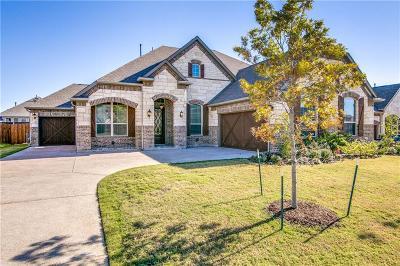 Rowlett Single Family Home For Sale: 9204 Lakehurst Avenue