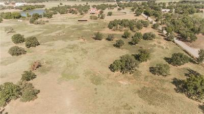 Millsap Residential Lots & Land For Sale: 1620 Cool Junction #Tr. 1