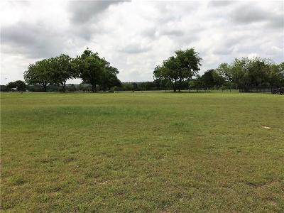 Mineral Wells Residential Lots & Land For Sale: 00 Holiday Hills Drive