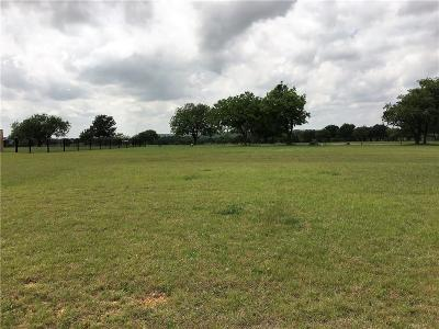 Mineral Wells Residential Lots & Land For Sale: Holiday Hills Drive