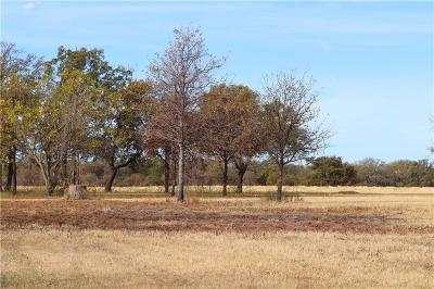 Lipan Residential Lots & Land For Sale: 0001b S Hwy 281