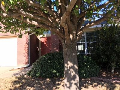 Rockwall, Fate, Heath, Mclendon Chisholm Single Family Home Active Option Contract: 423 Butternut Drive