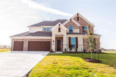 Single Family Home For Sale: 3807 Wild Flower Lane