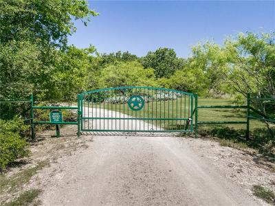 Weatherford Farm & Ranch For Sale: 624 Maddux Road
