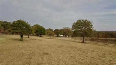 Parker County, Hood County, Palo Pinto County, Wise County Farm & Ranch For Sale: County Rd 3848