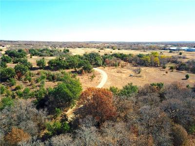 Weatherford Farm & Ranch For Sale: 2367a Advance Road