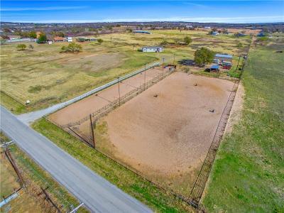 Millsap Single Family Home For Sale: 1011 Fox Road