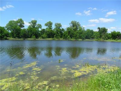 Hamilton County Farm & Ranch For Sale: Tbd Hwy 281 S Pruitt Farm Road
