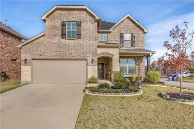 Little Elm Single Family Home For Sale: 3401 Palm Lake Drive