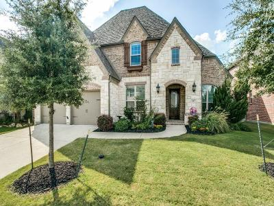 Mckinney Single Family Home For Sale: 317 Rough Creek Drive
