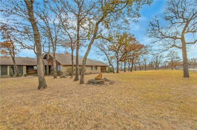 Millsap Farm & Ranch For Sale: 1799 S Fm 113