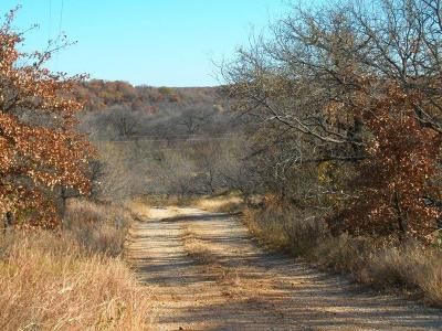 Jacksboro Farm & Ranch For Sale: 00 Crooked Creek Rd