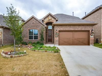 Lewisville Single Family Home For Sale: 1306 Venezia Lane