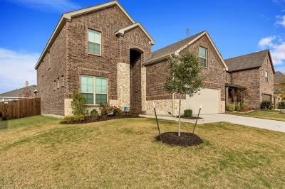 Little Elm Single Family Home For Sale: 1017 Lavender Drive