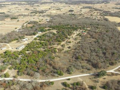 Weatherford Farm & Ranch For Sale: 1607 Sweet Springs