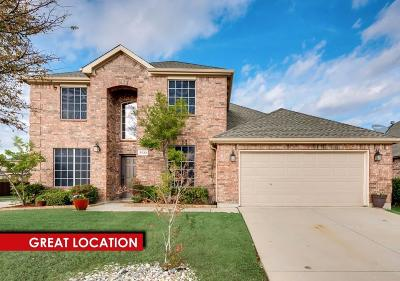 Little Elm Single Family Home For Sale: 3033 Morning Star Drive