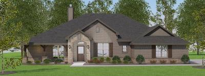 Decatur Single Family Home For Sale: 102 High Ridge Court