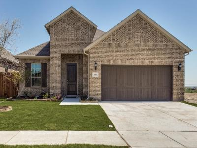 Fort Worth Single Family Home For Sale: 5565 Vaquero