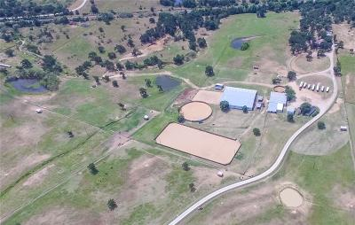 Millsap Farm & Ranch For Sale: 599 Fm 3028