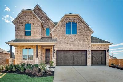 Celina Single Family Home For Sale: 2938 Hackberry Creek Trail