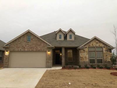 Fort Worth Single Family Home For Sale: 8820 Copper Crossing Drive