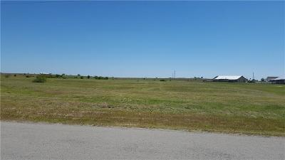 Parker County, Tarrant County, Wise County Residential Lots & Land For Sale: 08 Blue Ridge Drive
