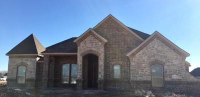 Springtown Single Family Home For Sale: 2007 Dash Lane