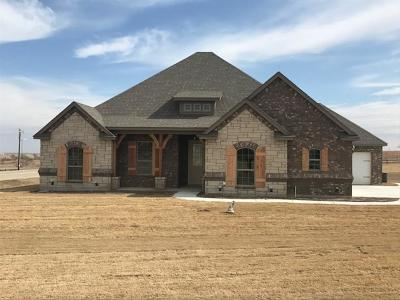 Godley Single Family Home For Sale: 7201 Spring Ranch Court