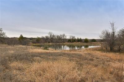 Azle Farm & Ranch For Sale: 14130 Briar Road