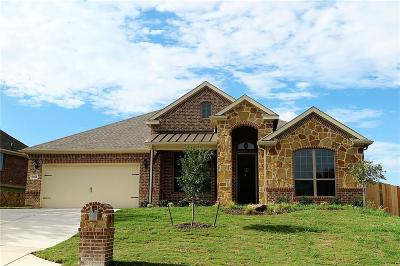 Fort Worth Single Family Home For Sale: 10950 Live Oak Creek Drive