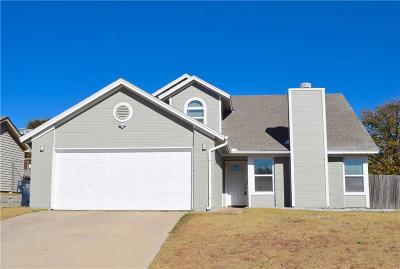 Fort Worth Single Family Home For Sale: 10008 Lone Eagle Drive