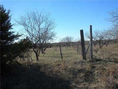 Angus, Barry, Blooming Grove, Chatfield, Corsicana, Dawson, Emhouse, Eureka, Frost, Hubbard, Kerens, Mildred, Navarro, No City, Powell, Purdon, Rice, Richland, Streetman, Wortham Farm & Ranch For Sale: 0000 C R 4210