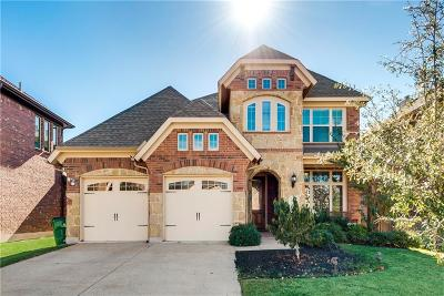 McKinney Single Family Home For Sale: 3705 Buchanan Street