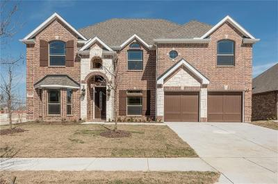 Frisco Single Family Home For Sale: 13106 Llano Avenue