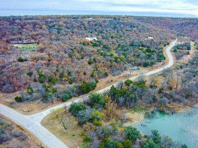 Palo Pinto County Residential Lots & Land For Sale: Lot 19 Arts Way