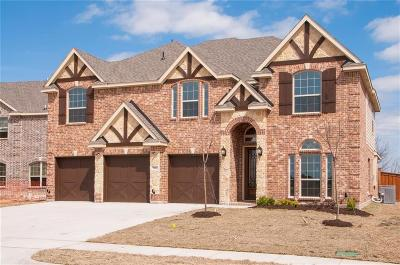 Grand Prairie Single Family Home For Sale: 7112 Playa Imperial