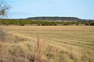 Hico Farm & Ranch For Sale: 1615 County Road 227