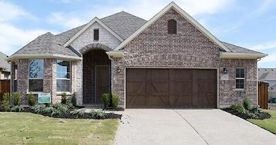 Mckinney Single Family Home For Sale: 821 Summer Lane