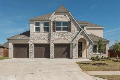 Little Elm Single Family Home For Sale: 13725 Vallanca Court