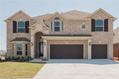 Little Elm Single Family Home For Sale: 1401 Torrent Drive