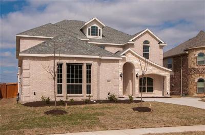 Grand Prairie Single Family Home For Sale: 2908 Arenoso