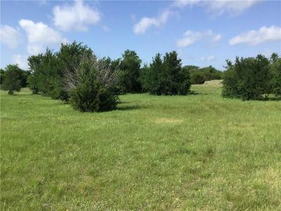 Annetta South Residential Lots & Land For Sale: 116 Canyon Lake Drive
