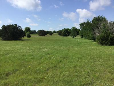 Annetta South Residential Lots & Land For Sale: 112 Canyon Lake Drive