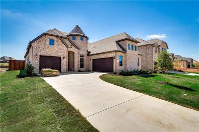 Tarrant County Single Family Home For Sale: 3303 Willow Brook Drive