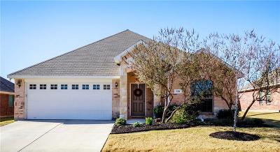 Arlington Single Family Home For Sale: 720 Sendero Road