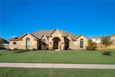 Glenn Heights Single Family Home For Sale: 205 Moses Drive
