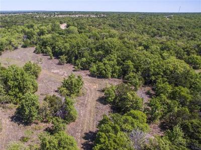 Palo Pinto Farm & Ranch For Sale: 0004 Brown Road
